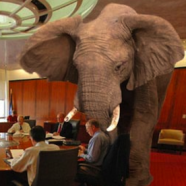 """The Elephant in the Room and """"Biblical Health"""""""